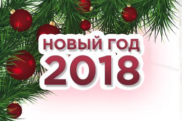 Новый год 2018!